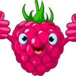 raspberry cartoon icon